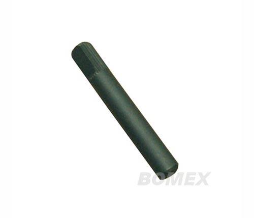 Türscharnierbolzen, (lang), Ø 8mm